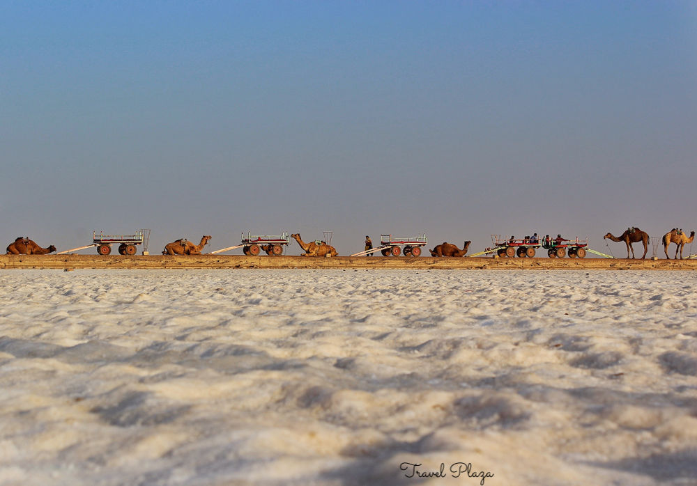 rann of kutch Travel Plaza